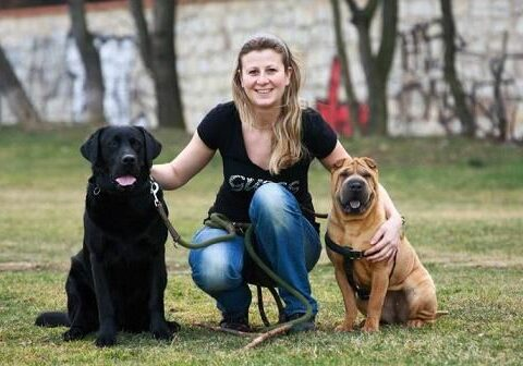 Na veterinární klinice Jičínská 47, Praha 3 ošetřujeme všechny mazlíčky, jako by byly naši vlastní.